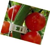 100 XL Tomato and Veggie Garden Plant Support Clips for