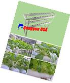 36 Plant Sites Hydroponic Grow Kit Ebb and Flow Deep Water