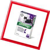 6Pack  Bayer Advantage for cats over 4kg