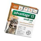 Bayer Advantage II For Cats 5 - 9 lb 144 fl oz Four Pack