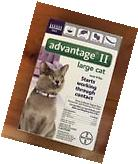 Bayer's Advantage II for Large Cats over 9lbs