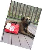 Large AKC PET SAFETY KIT 50 Piece First Aid in Travel Size