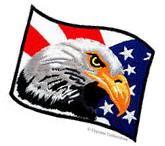 BALD EAGLE AMERICAN FLAG iron-on EMBROIDERED PATCH USA