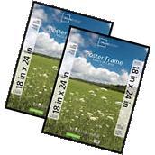 MAINSTAYS 18x24 Basic Poster Picture Frame White Decor Photo