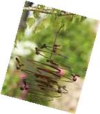 Bumble Bee Hive Spiral Metal Hanging Wind Outdoor Garden Art