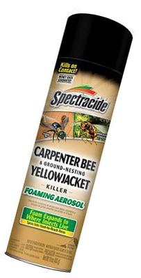 Spectracide Carpenter Bee and Ground Nesting Yellow Jacket