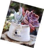 Cute Basket Bag Garden Flower Planter Succulent Cactus