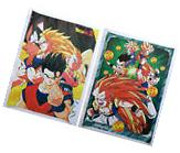 Dragon Ball Z Goku Gohan Gotenks Vegeta Anime Set of 2