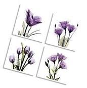 Elegant Tulip Purple Flower Picture Prints Canvas Wall Art