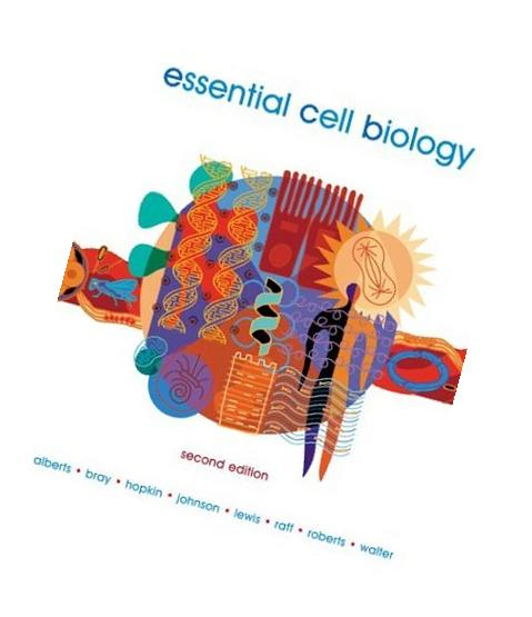 Essential Cell Biology. Second Edition