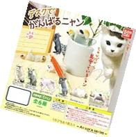 Gashapon Desk de ganbaru nyan set of 5 American shorthair