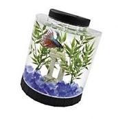 Desktop Aquarium Tank Beta Fish Kit 1 Gallon Home Office