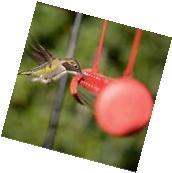 Perky-Pet HUMBAR200DTC Hummerbar Hummingbird Feeder 2' 2