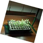 Hydrofarm Jump Start Indoor Gardening Seedling Heat Mat 17