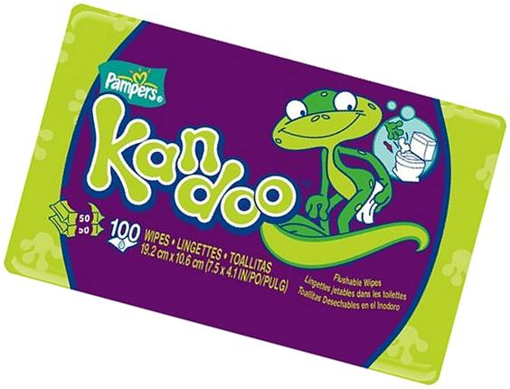 Kandoo Flushable Wipes, Unscented, 50 Count
