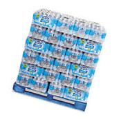 Nestle Waters Pure Life Water, 16.9 Ounce Bottles, 24/Carton