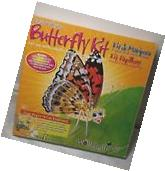 Live Butterfly Kit Habitat Insect Discovery Educational