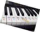 Color Piano Key Note Keyboard Stickers for Adults Children