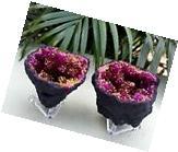 Pink Geode Pair With Stands Crystal Quartz Gemstone Specimen