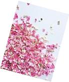 Pink Princess confetti 2 cups gender reveal baby girl shower
