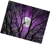 Purple Wall Pictures, Tree Moon, Purple Modern Home Decor