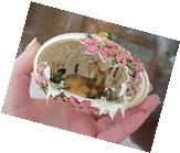 REAL Hand Decorated Carved Goose Egg Christmas Ornament Fawn