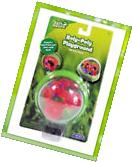 Roly Poly Playground - View Insects - Includes Isopods -