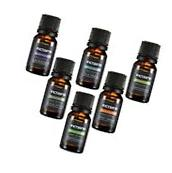 6 Pack Essential Oil Set 100% Pure Natural Therapeutic Grade