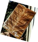 Stabilized Curly American chestnut 1.8x5x5. 1 exotic  wood