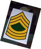 US Army USA National Guard E8 Master Sergeant Rank stripes