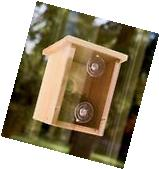Window Mount Bird Nest Nesting View Box Wood Finch Wren