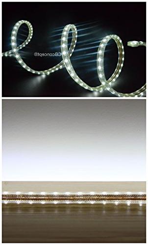 CBConcept 120 Volt LED Flex NEON Light Strip, 80 Feet, Blue