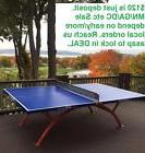 April LOCAL sale Unique outdoor indoor ping pong table