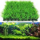 Artificial Aquatic Aquarium  Green  Grass Plant Lawn Fish