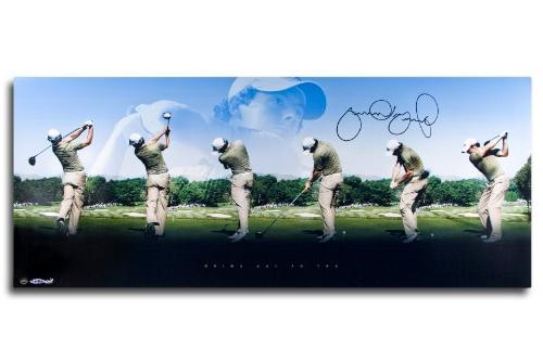 """Rory Mcilroy Autographed """"Art of the Swing"""" 36x15 Panoramic"""
