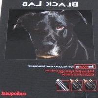 Audioquest Black Lab 20M Subwoofer Cable- RCA's