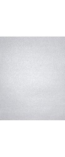 8 1/2 x 11 Cardstock - Silver Metallic  | Perfect for