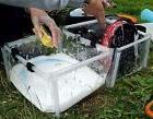 Coleman Portable Dish Sink Wash Basin Double Folding PVC