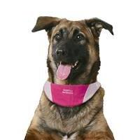Cool It Dog Puppy Bandanna Small - Pink Clothing Clothes