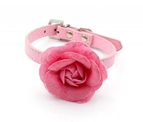 Namsan Big Velveteen Flower with PU Leather Puppy Collars -