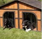 Double Dog House For Outside Extra Large Dogs Wood Pet