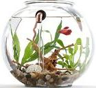 NEW NoClean Aquariums GravityFlow2 Self Cleaning Fishbowl!