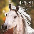 Horse: A Portrait 2017 Wall Calendar