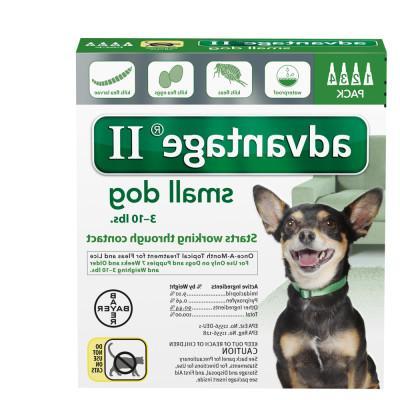 AdvantageA II 4-Pack Flea Dog Treatment
