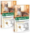 12 MONTH Advantage II Flea Control Small Cat for Cats 59 lbs