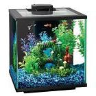 Central Aquatics Island 7.5-Gallon Glass Aquarium Kit w/ LED