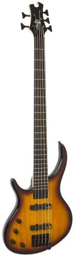 "Epiphone ""Toby"" Standard-IV 5 String Electric Bass Guitar,"