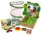 Insect Lore Live Butterfly Growing Kit Gift Box Set - 5