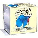 Imagine Gold Llc AIM12105 Betta Bowl Kit, 1/2 Gal