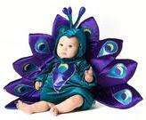Peacock Costume - Baby